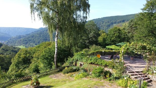 Blick auf Terrasse/Neckartal